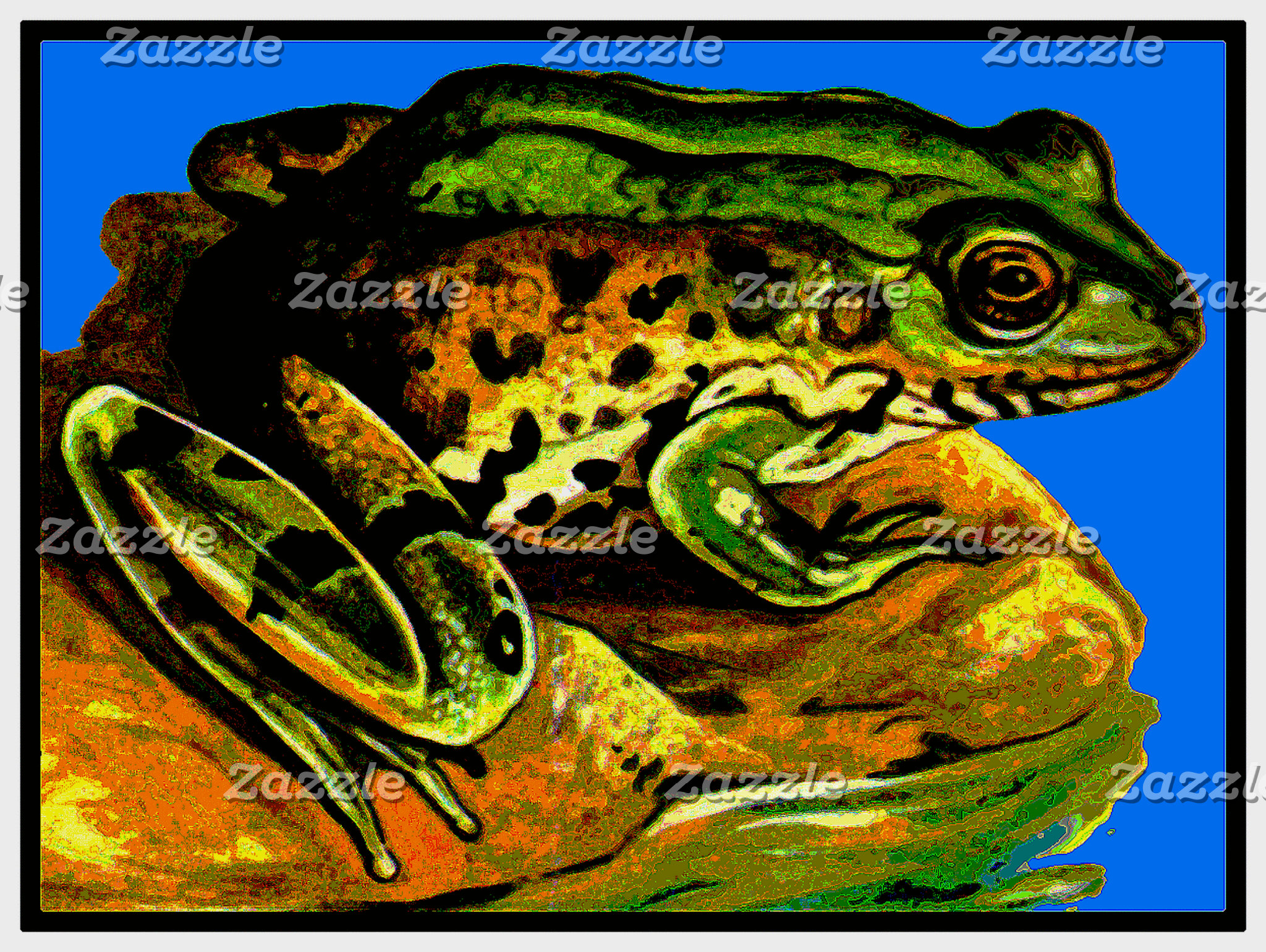 AMPHIBIANS-(FROGS,TOADS,SALAMANDERS,NEWTS