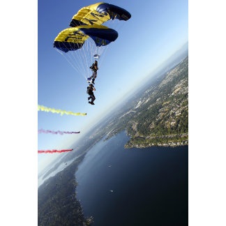 Members of the US Navy Parachute Team