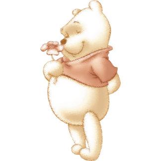 Classic Winnie the Pooh 1