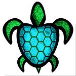 Blue Shell Turtle