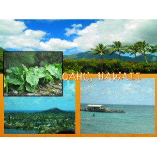 HAWAII COLLAGE #20