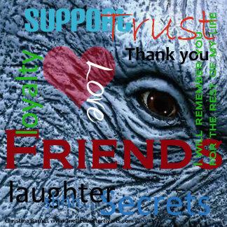 Friends Elephant Eye