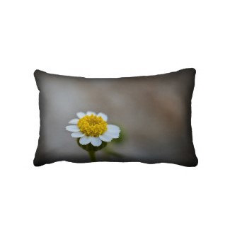 American MoJo Pillows