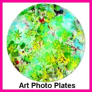Plates - Art Photo Wall Decor Gift Plates