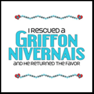 I Rescued a Griffon Nivernais (Male Dog)