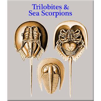 Trilobites and Sea Scorpions