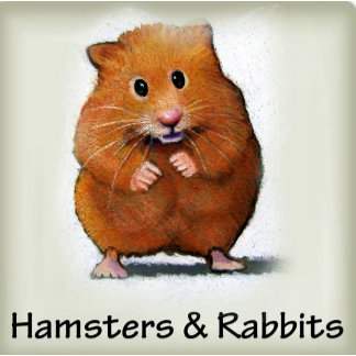 Hamsters, Rabbits, Ferrets