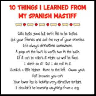 10 Things I Learned From My Spanish Mastiff Joke