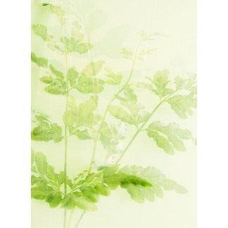 """green fern stems poster print"""