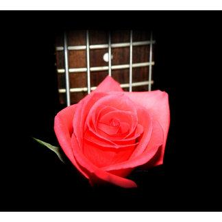 Rose against five string bass fretboard