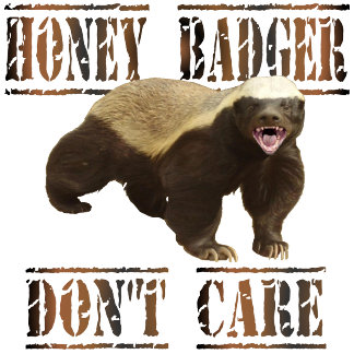 HONEY BADGER DONT CARE GIFTS!