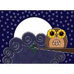 NIGHT_OWL.jpg
