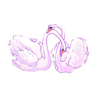 Swarrel & Swendle Swan