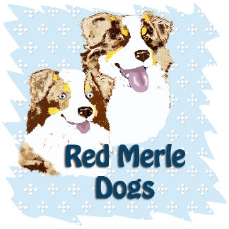 Red Merle