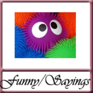 Humor/Sayings/Quotes