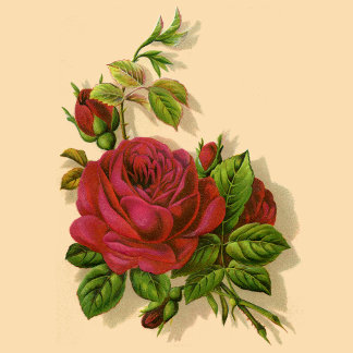 Vintage Red Rose Wedding Set