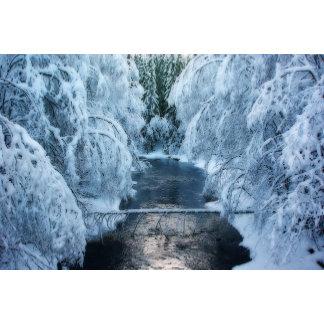 * Seasons