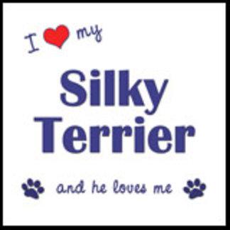 I Love My Silky Terrier (Male Dog)