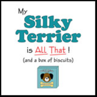 My Silky Terrier is All That!