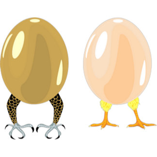 Dragons and chickens eggs