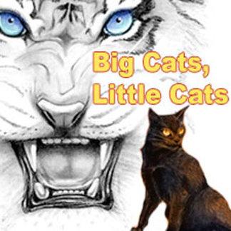 Big Cats, Little Cats