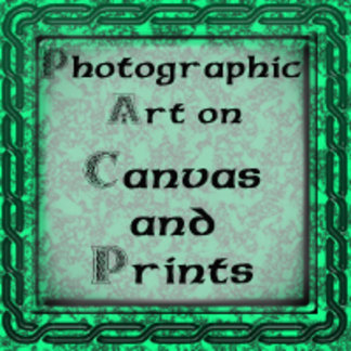 Art on Canvas & Prints