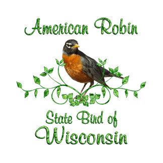 Robin Wisconsin Bird