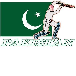 Pakistan Cricket Player