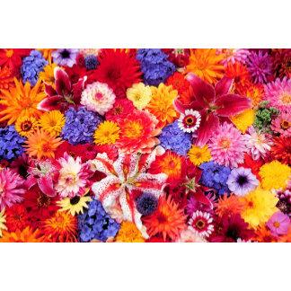 Flower design of Dalhia, Oriental Lilies,