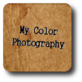 My Colour Photography