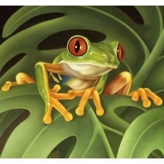 Frogs/Amphibians