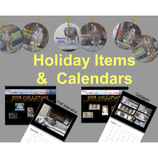 Holiday Items & Calendars
