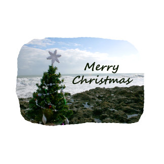 Christmas Tree Against Beach Rocks Merry Christmas