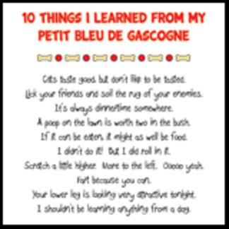 Things I Learned From Petit Bleu de Gascogne Joke