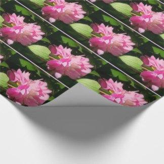 Gift Wrap/Ribbon