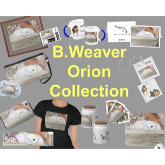 B.Weaver Orion Collection