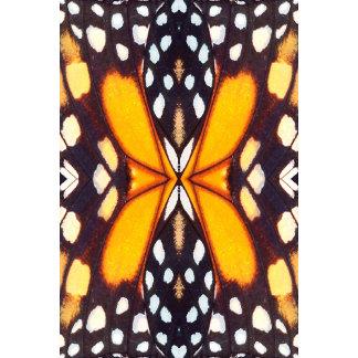 Monarch Butterfly Wings 2
