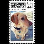 yellow_lab_stamp_postage-p172367604045438051anr92_