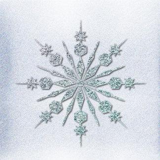 Crystal Snowflakes Winter Wedding