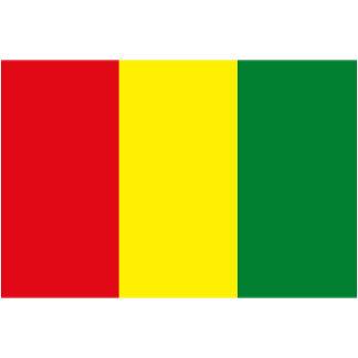 Guinea Flag