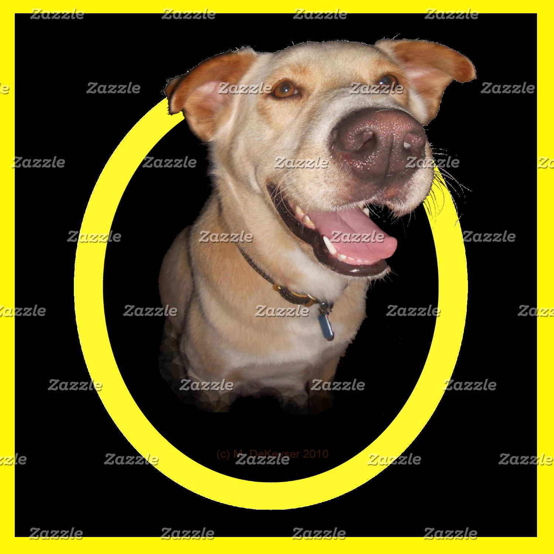 Dogs: Yellow Dog