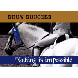 SHOW SUCCESS