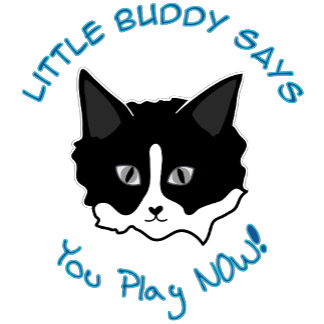 Little Buddy Says, You Play NOW!