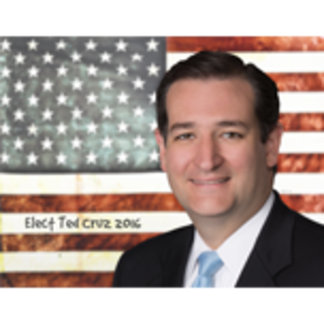 Elect Ted Cruz 2016