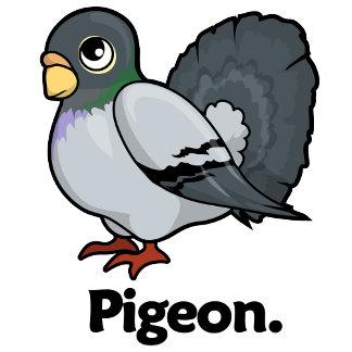 Pigeon Pigeon.