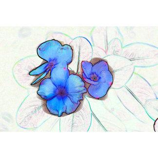 blue pinwheel flower sketch