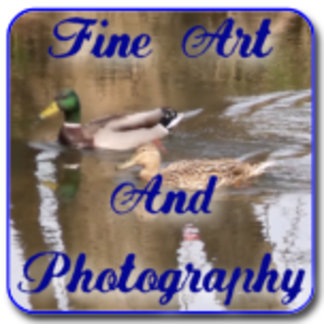 Fine Art and Photography