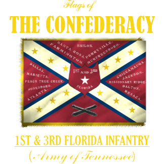 Flags of the Confederacy 2