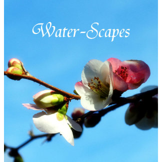 Water-Scapes