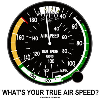 What's Your True Air Speed? (Air Speed Indicator)